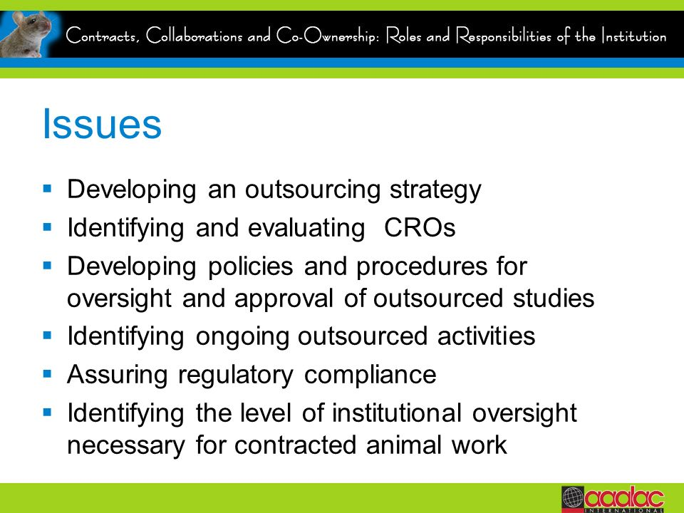 Issues Developing an outsourcing strategy