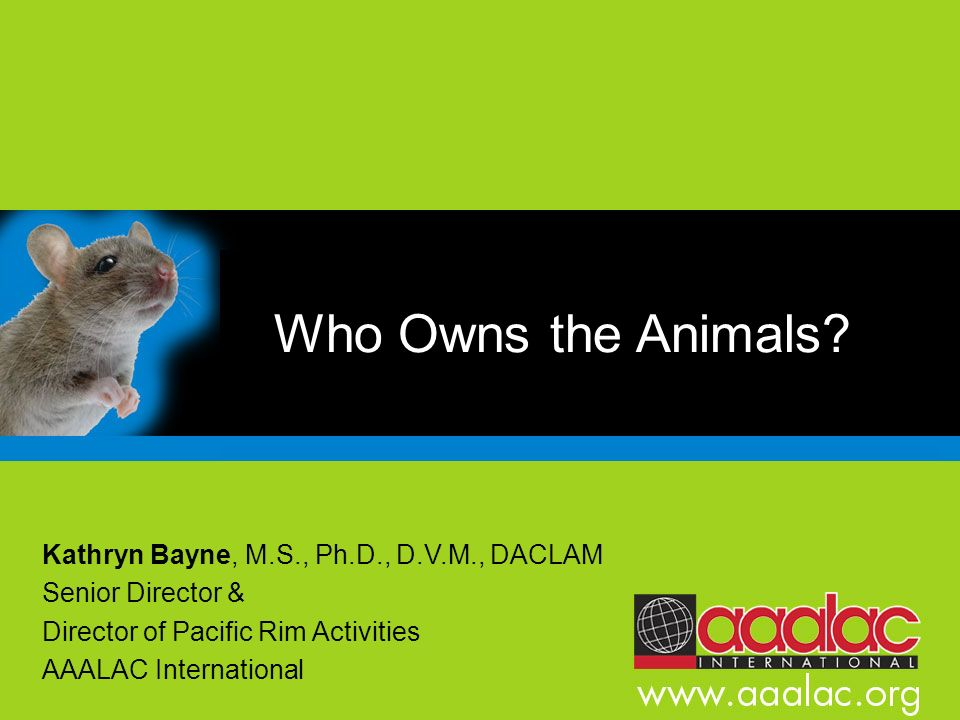 Who Owns the Animals Kathryn Bayne, M.S., Ph.D., D.V.M., DACLAM