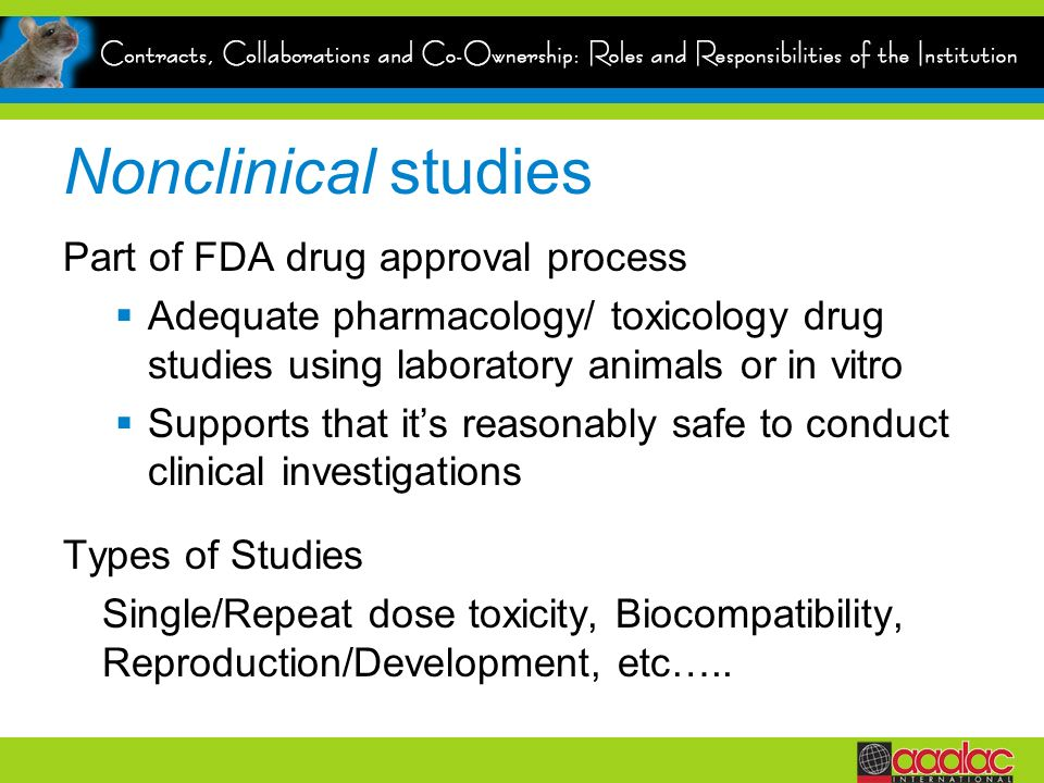 Nonclinical studies Part of FDA drug approval process