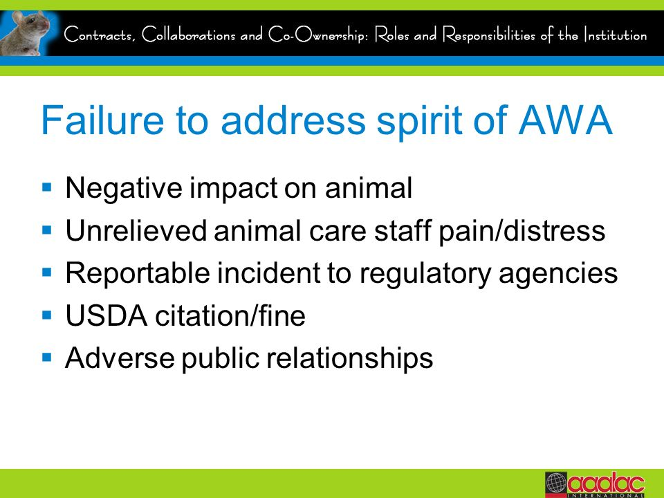 Failure to address spirit of AWA