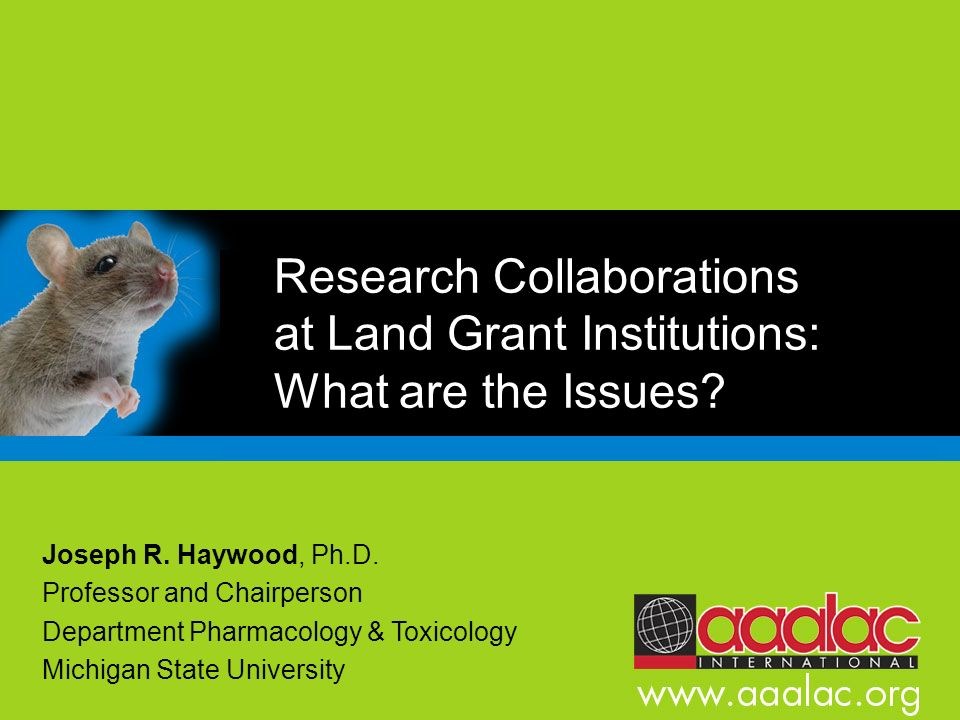 Research Collaborations at Land Grant Institutions: What are the Issues
