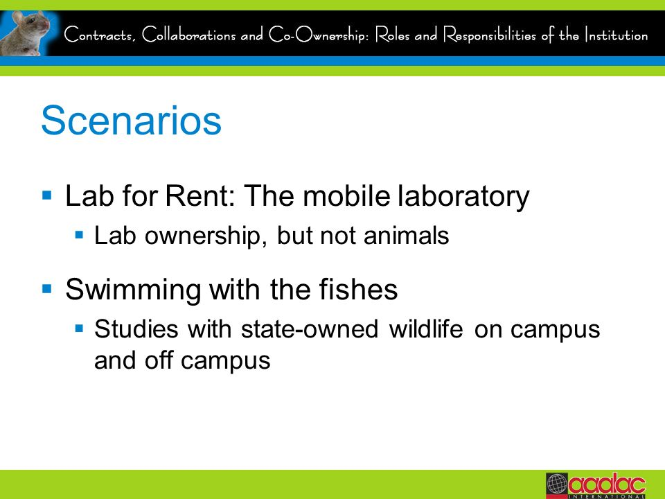 Scenarios Lab for Rent: The mobile laboratory Swimming with the fishes