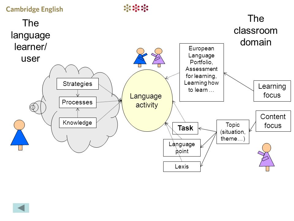 The language learner/ user