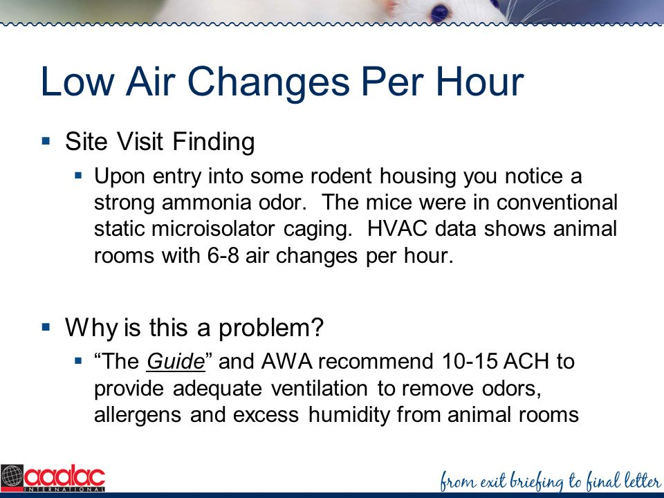 Low Air Changes Per Hour