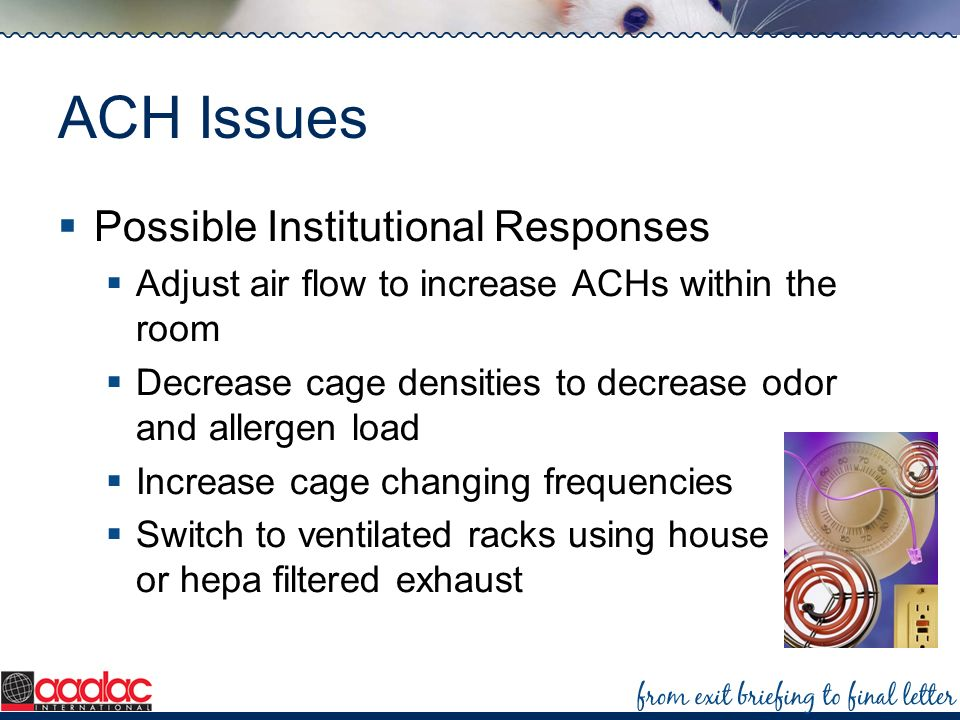 ACH Issues Possible Institutional Responses