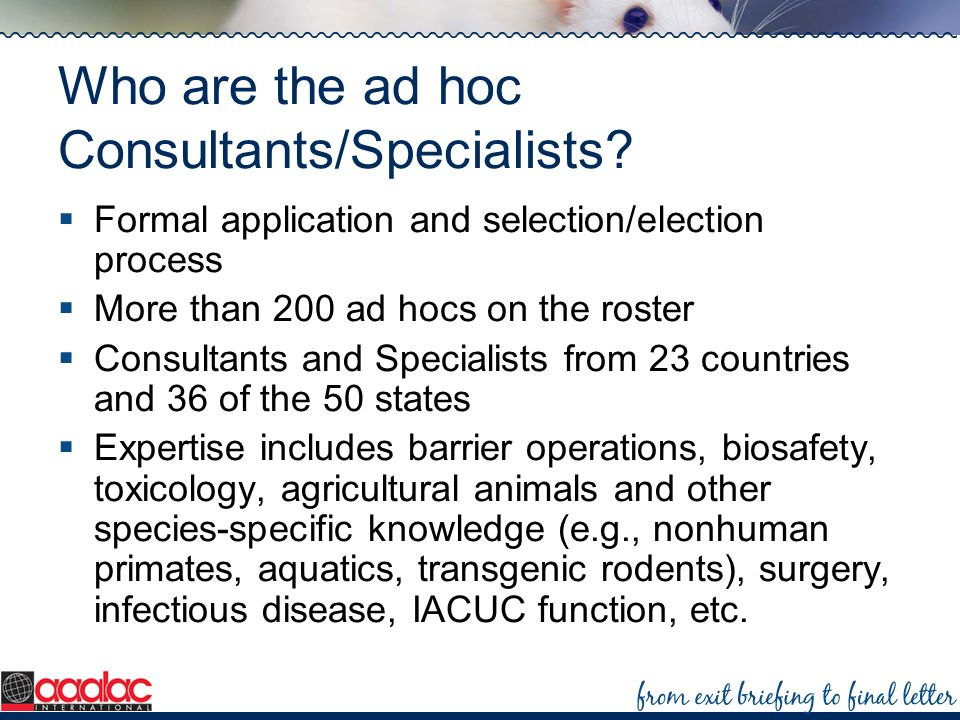Who are the ad hoc Consultants/Specialists