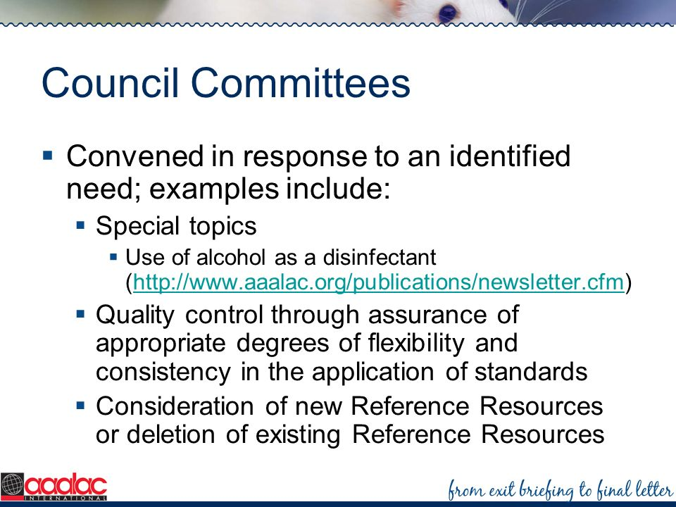 Council Committees Convened in response to an identified need; examples include: Special topics.