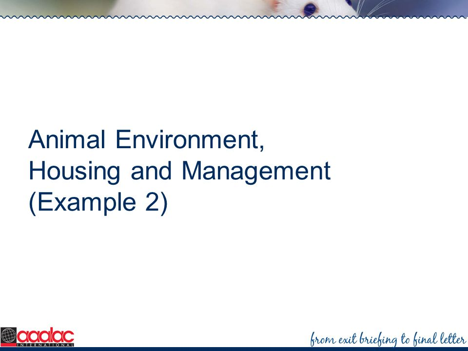 Animal Environment, Housing and Management (Example 2)