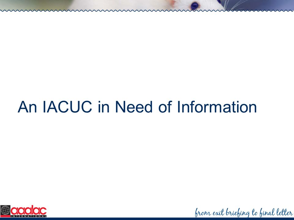 An IACUC in Need of Information