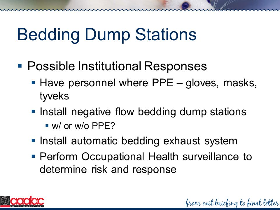 Bedding Dump Stations Possible Institutional Responses