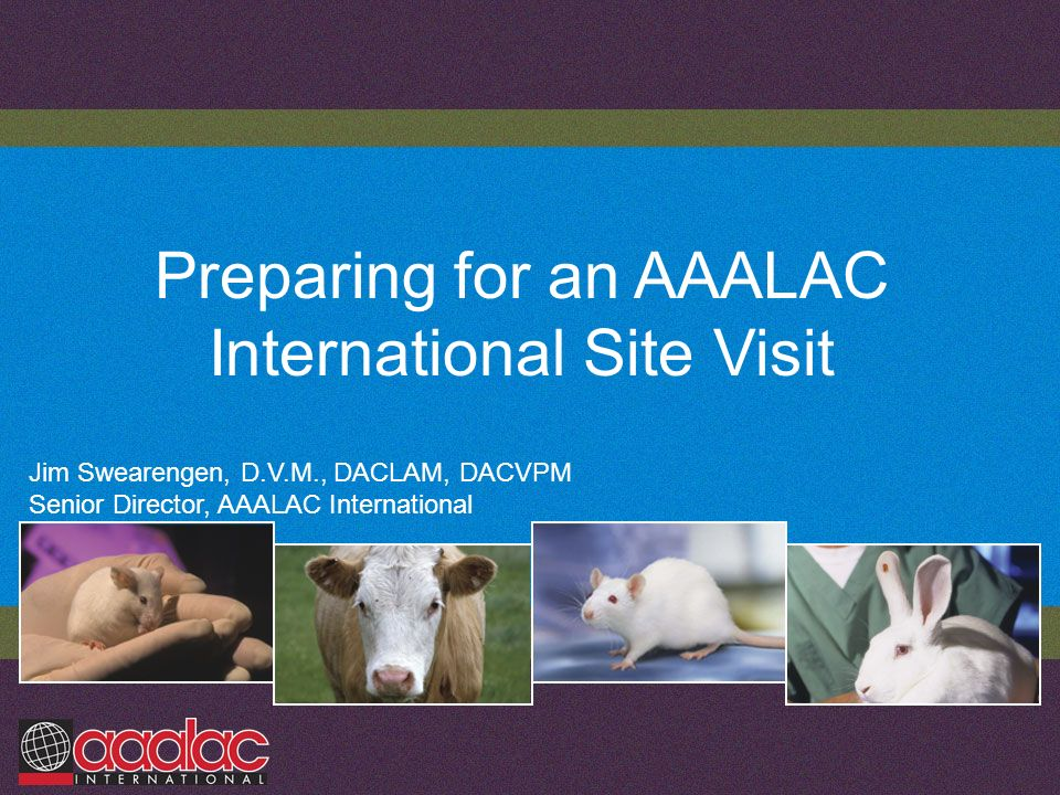 Preparing for an AAALAC International Site Visit