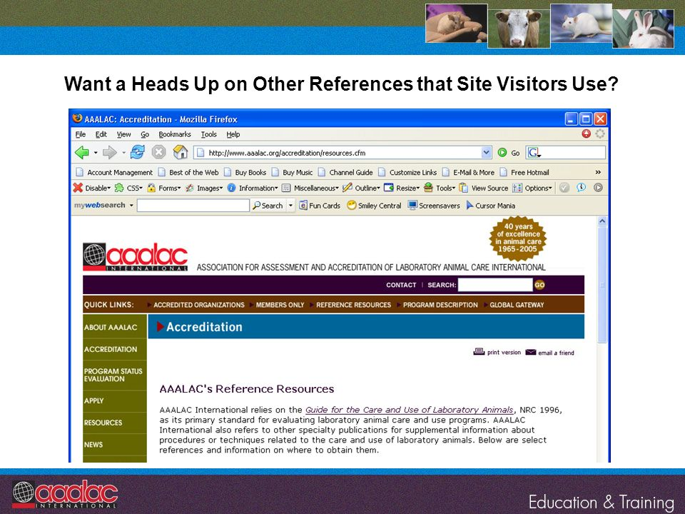 Want a Heads Up on Other References that Site Visitors Use