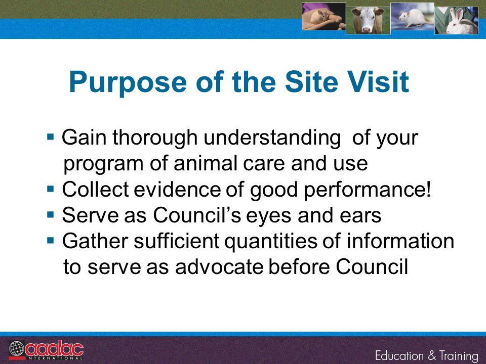 Purpose of the Site Visit