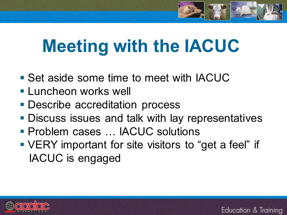Meeting with the IACUC Set aside some time to meet with IACUC