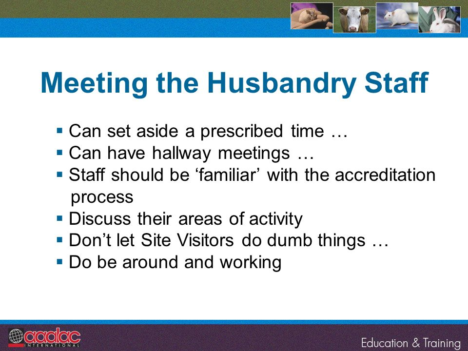 Meeting the Husbandry Staff