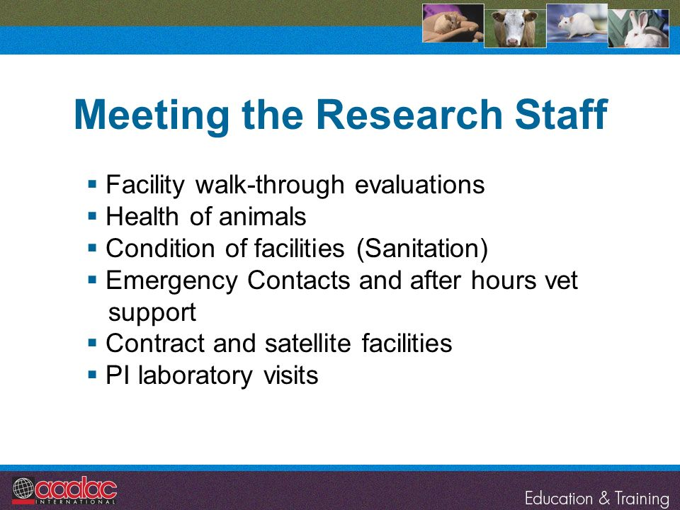 Meeting the Research Staff