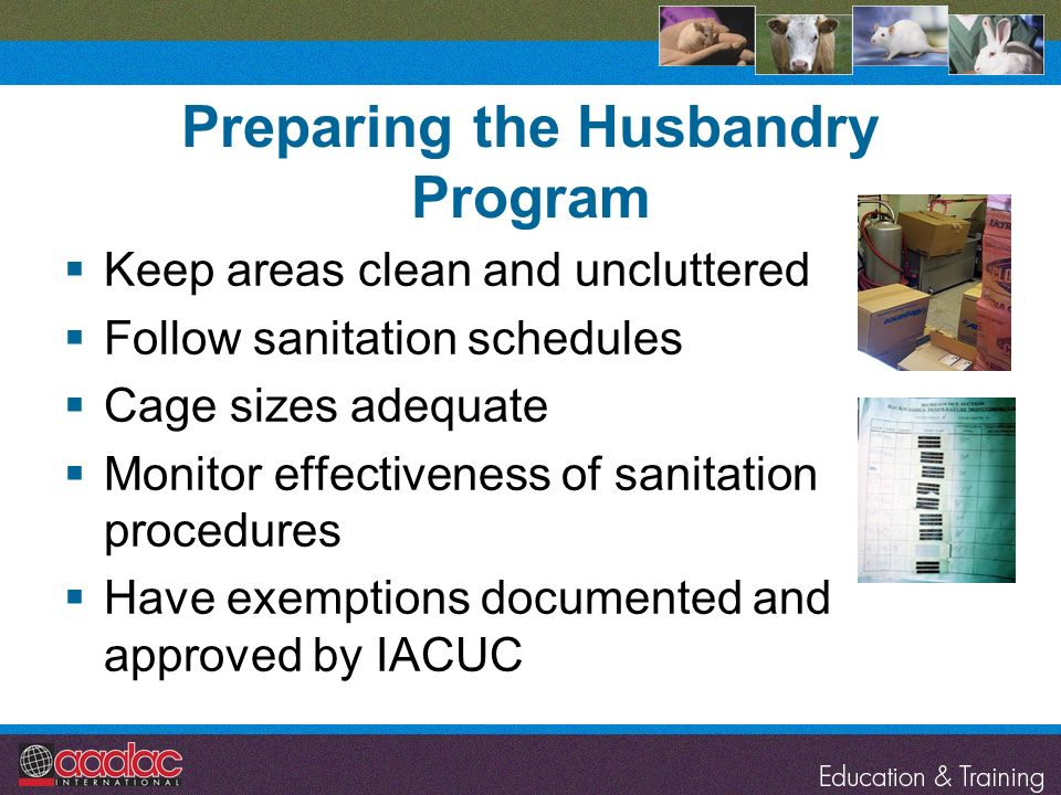 Preparing the Husbandry Program