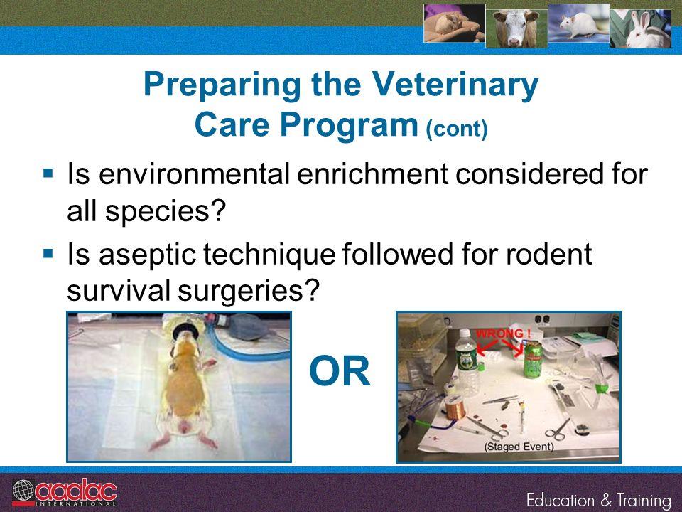 Preparing the Veterinary Care Program (cont)