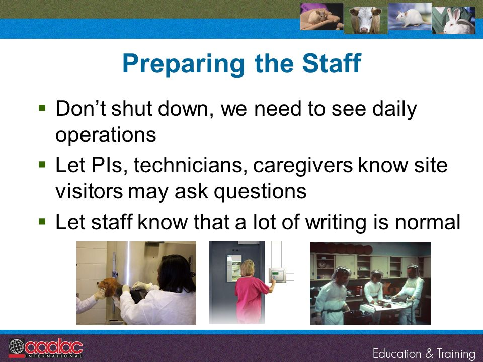 Preparing the Staff Don't shut down, we need to see daily operations