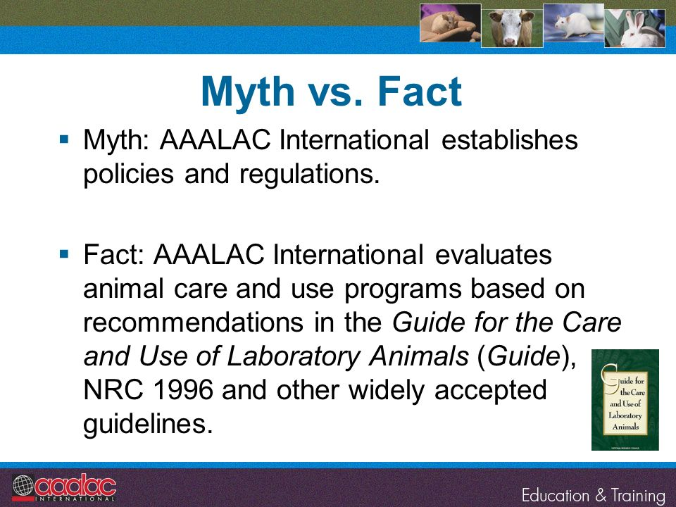 Myth vs. Fact Myth: AAALAC International establishes policies and regulations.