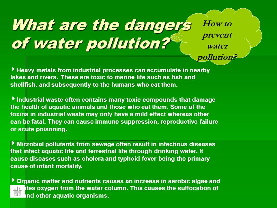 the effects of water pollution on everyday life Pollution is a global epidemic and does not only have ill effects on the  how does pollution affect your daily life  including water pollution,.