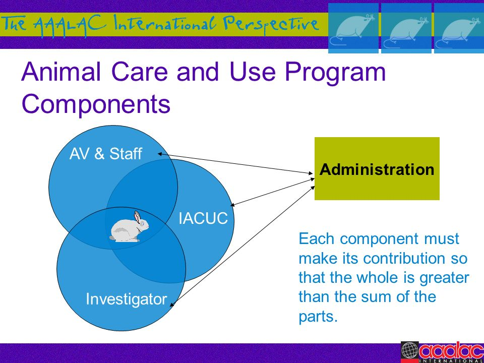 Animal Care and Use Program Components