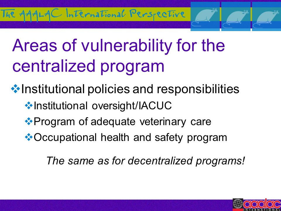 Areas of vulnerability for the centralized program