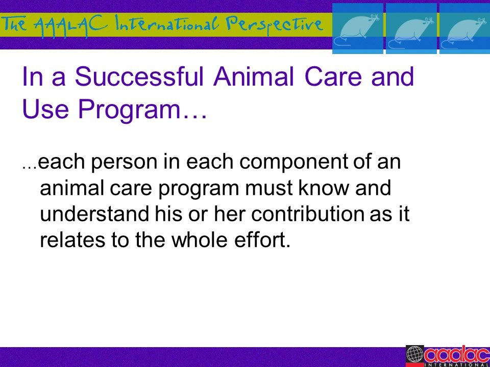 In a Successful Animal Care and Use Program…