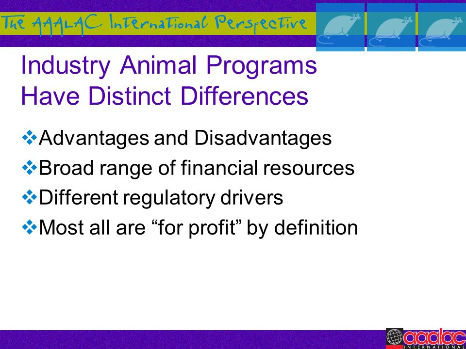 Industry Animal Programs Have Distinct Differences
