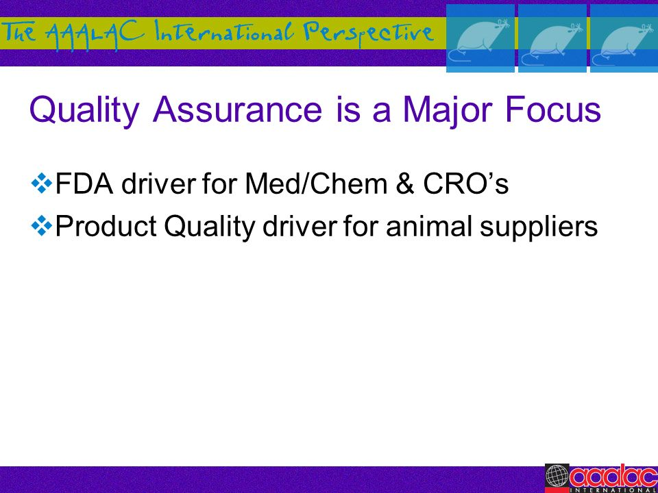 Quality Assurance is a Major Focus