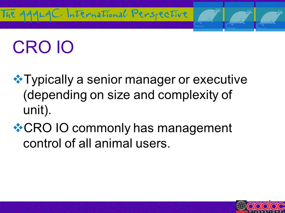 CRO IO Typically a senior manager or executive (depending on size and complexity of unit).