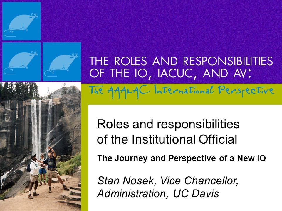 Roles and responsibilities of the Institutional Official