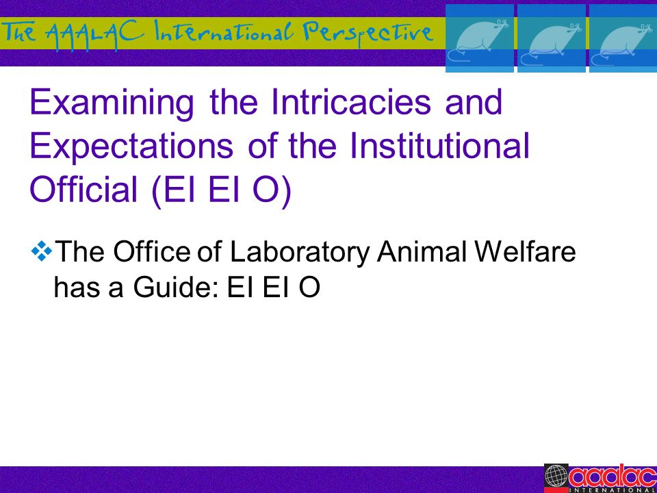 The Office of Laboratory Animal Welfare has a Guide: EI EI O