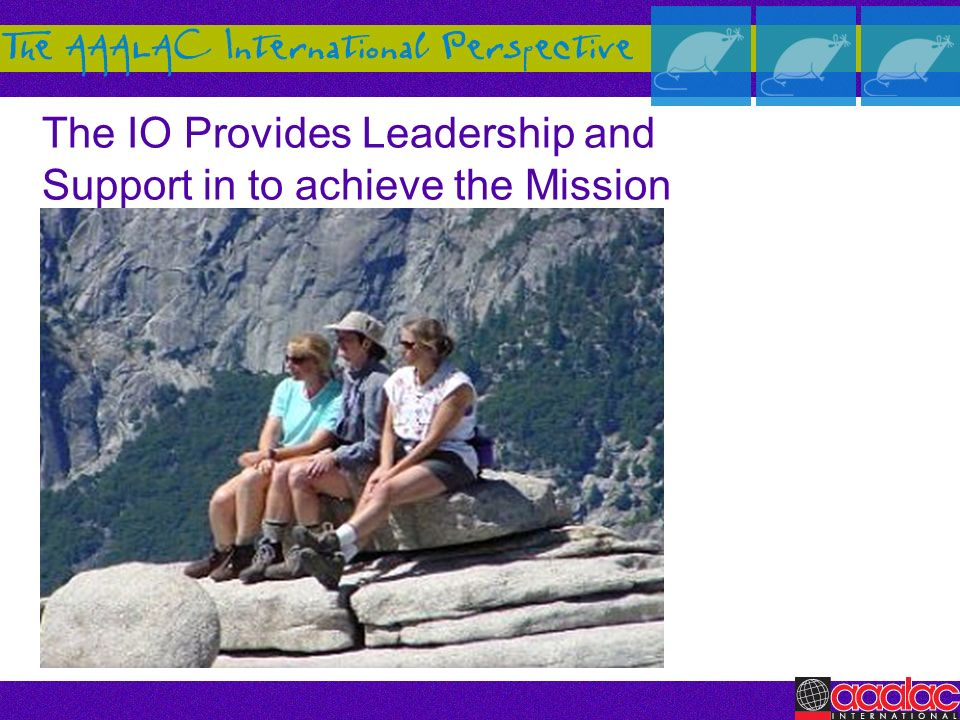 The IO Provides Leadership and Support in to achieve the Mission