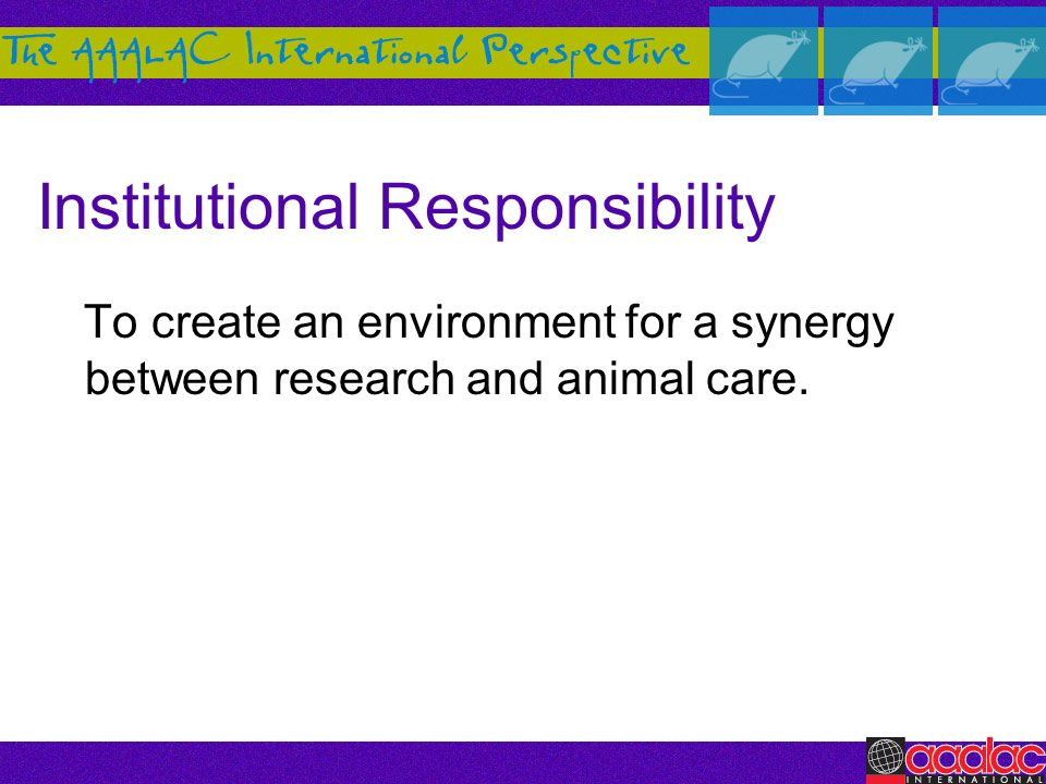 Institutional Responsibility