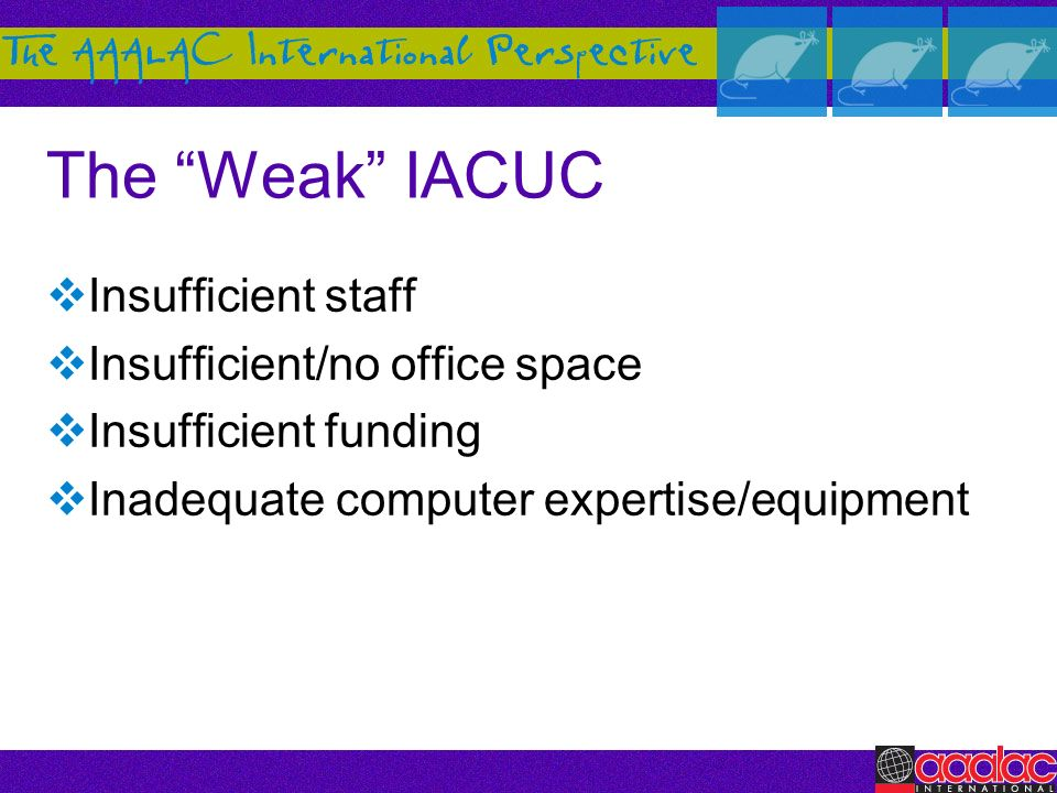 The Weak IACUC Insufficient staff Insufficient/no office space