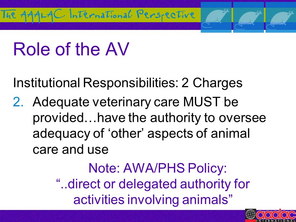 Role of the AV Institutional Responsibilities: 2 Charges