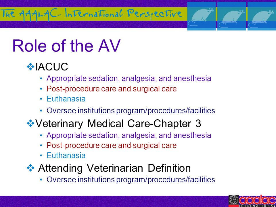 Role of the AV IACUC Veterinary Medical Care-Chapter 3