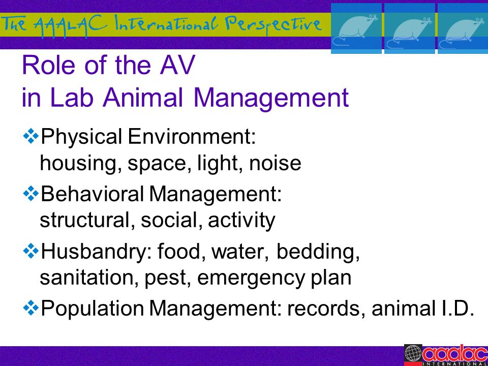 Role of the AV in Lab Animal Management