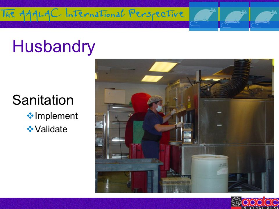 Husbandry Sanitation Implement Validate