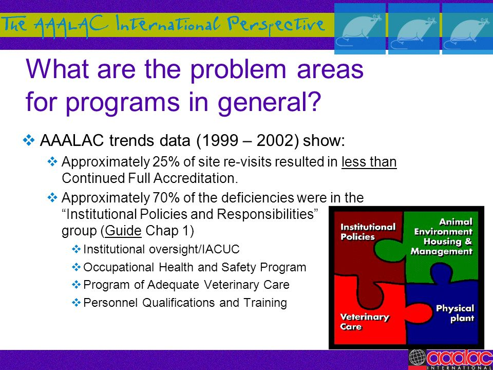 What are the problem areas for programs in general