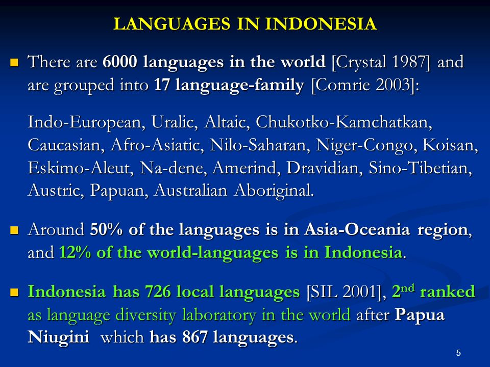 LANGUAGES IN INDONESIA