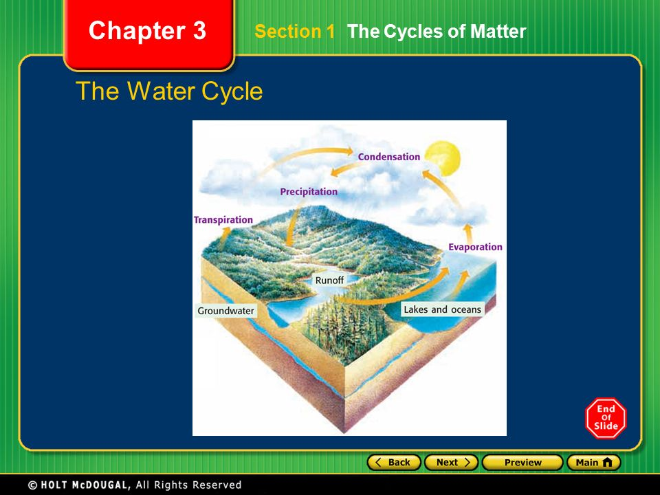 Preview Section 1 The Cycles of Matter Section 2 Ecological – Cycles of Matter Worksheet