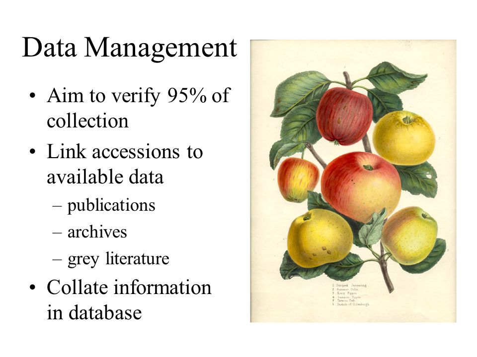 Data Management Aim to verify 95% of collection