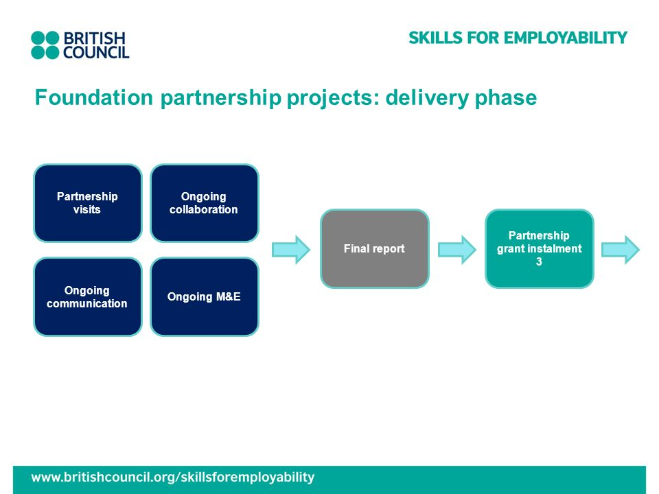 Foundation partnership projects: delivery phase