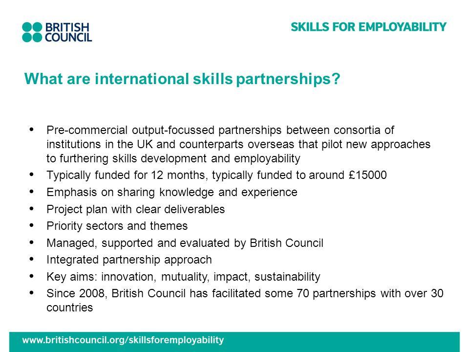 What are international skills partnerships