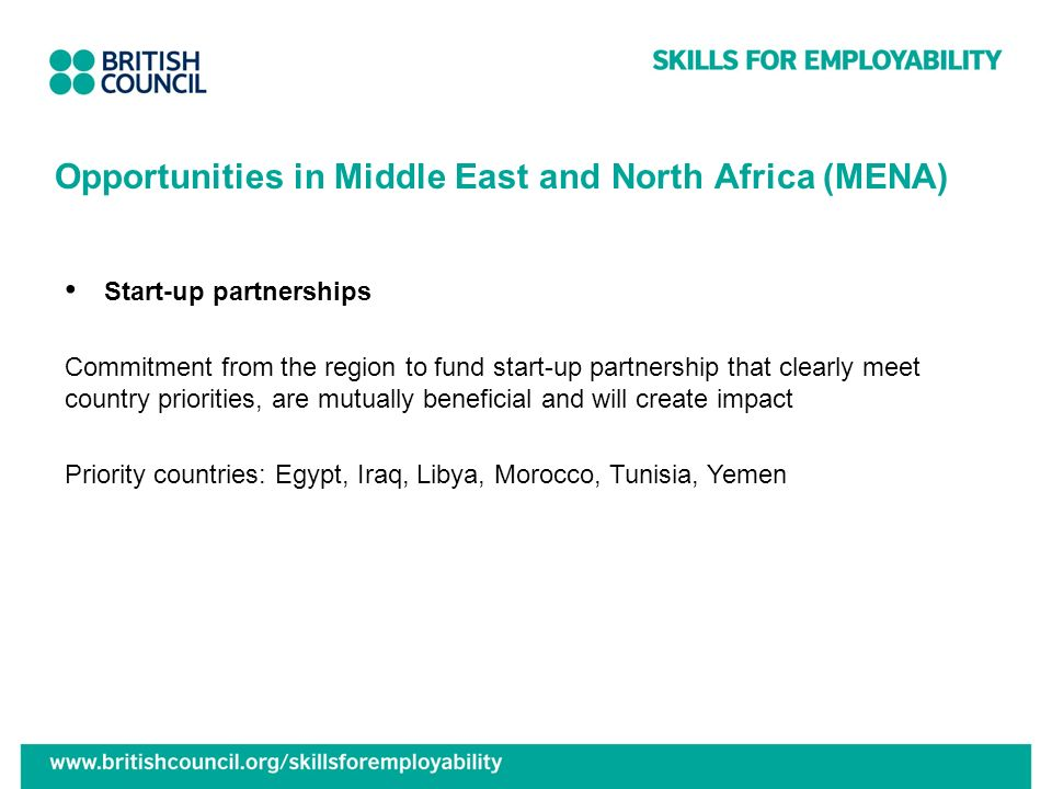 Opportunities in Middle East and North Africa (MENA)