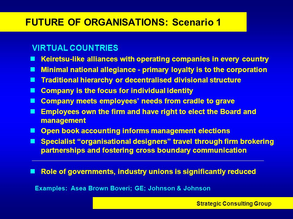 FUTURE OF ORGANISATIONS: Scenario 1