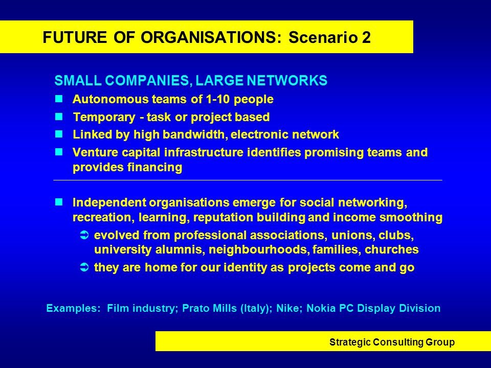 FUTURE OF ORGANISATIONS: Scenario 2