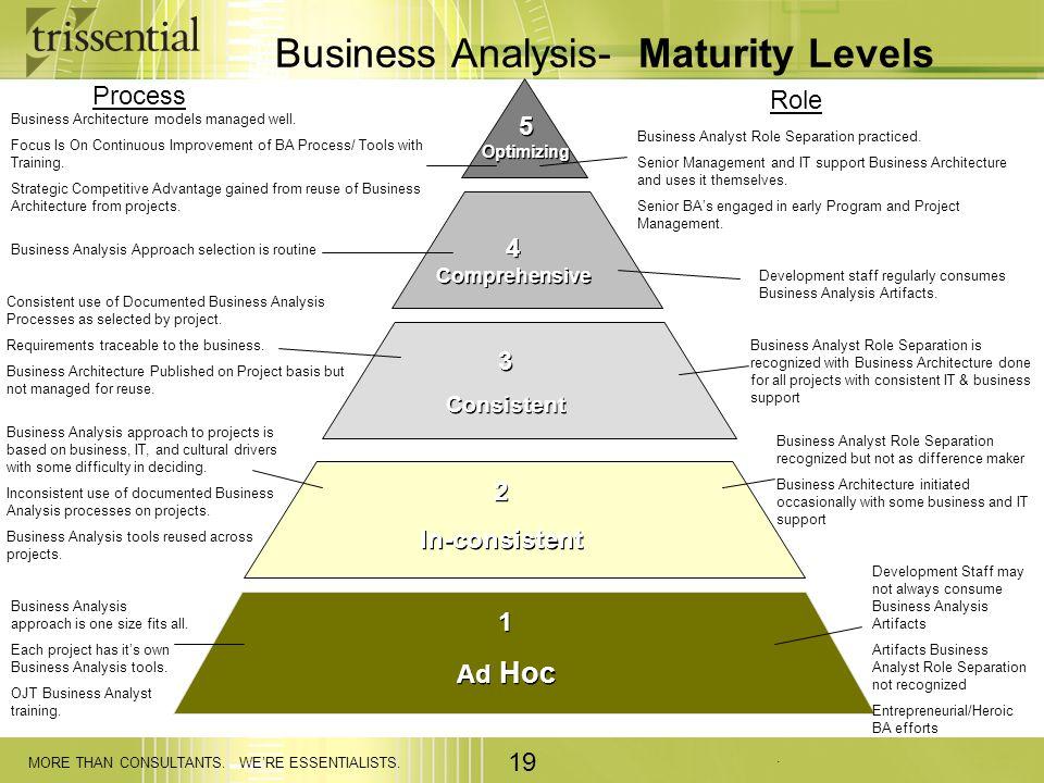 Business Analysis- Maturity Levels